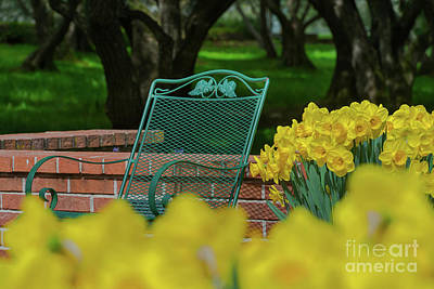 Photograph - Grandma's Chair by Glenn Franco Simmons