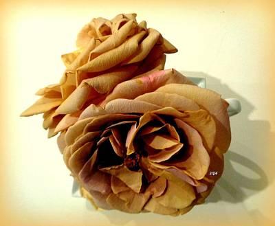 Photograph - Grandmas Roses - 3 by VIVA Anderson