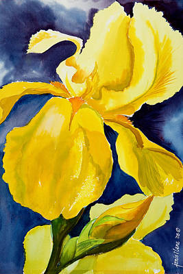 Grandma's Yellow Iris Art Print by Janis Grau