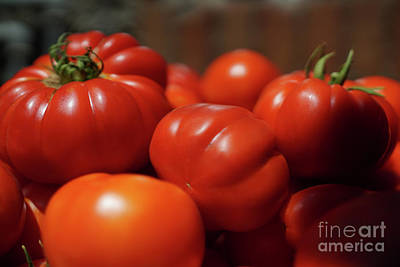 Photograph - Grandpas Tomatoes by Giovanni Malfitano