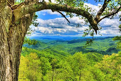 Photograph - Grandview Overlook by Dale R Carlson