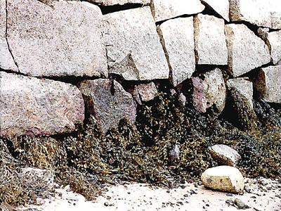 Painting - Granite And Seaweed by Paul Sachtleben