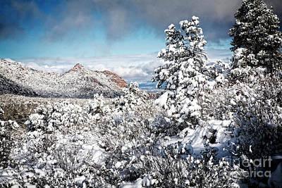 Photograph - Granite Basin Wilderness by Scott Kemper