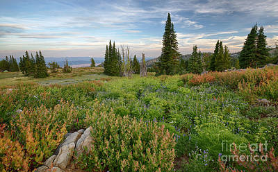 Photograph - Granite Mountain View by Idaho Scenic Images Linda Lantzy