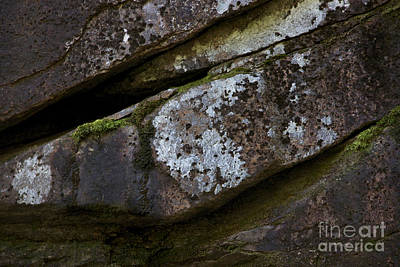 Photograph - Granite Rock Close Up by Michael Mooney