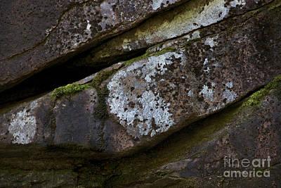 Granite Rock Close Up Art Print by Michael Mooney