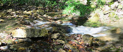 Photograph - Grannis Creek by Bonfire Photography