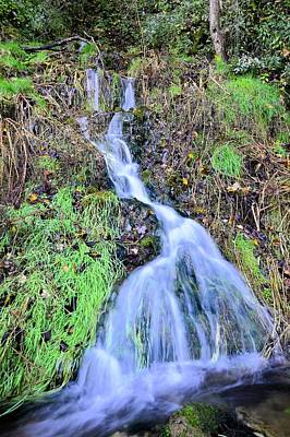 Photograph - Grannis Spring by Bonfire Photography