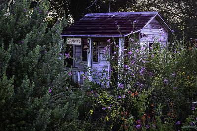 Photograph - Granny's Garden by Leticia Latocki
