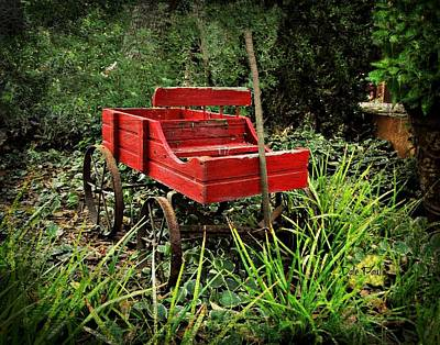 Photograph - Granny's Wagon by Dale Paul