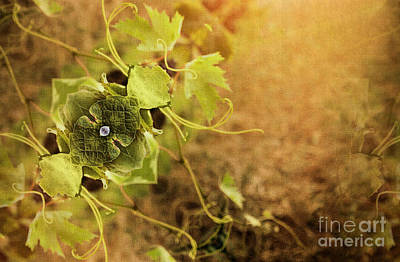 Grape Leaf Mixed Media - Grape Commodity by Patricia Griffin