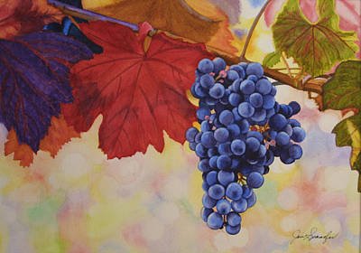 Grape Harvest Art Print by Jan  Spangler