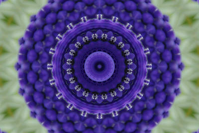 Photograph - Grape Hyacinth Kaleidoscope 2 by Robyn Stacey