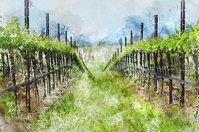 Grow Digital Art - Grape Vines In Napa Valley California by Brandon Bourdages