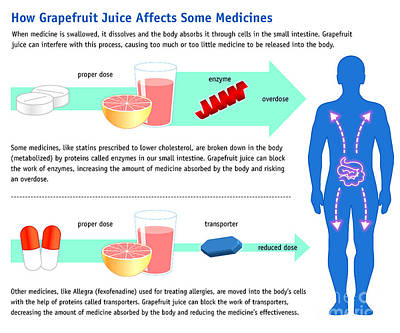 Grapefruit Photograph - Grapefruit Juice And Medicine Warning by Science Source