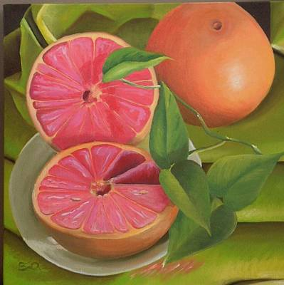 Grapefruit On Fabric Original by Barbara Auito