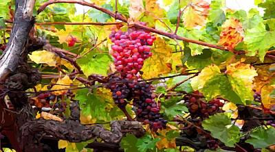 Digital Art - Grapes by Bob Shimer