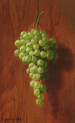 Bunch Of Grapes Painting - Grapes   Green by Andrew John Henry Way