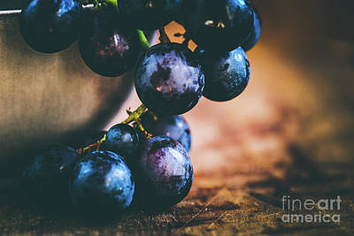 Grapes Print by Jana Behr
