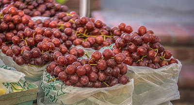 Photograph - Grapes by Jane Luxton