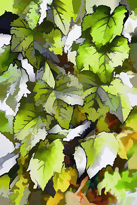 Grapes Leaves In A Vineyard Art Print by Lanjee Chee