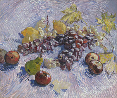 Grapes, Lemons, Pears, And Apples Art Print by Vincent Van Gogh