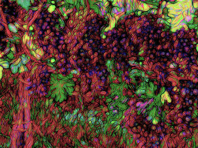 Photograph - Grapes Of Rap by Leslie Montgomery