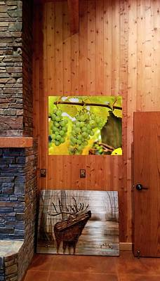 Photograph - Grapes On The Vine by Jerry Sodorff