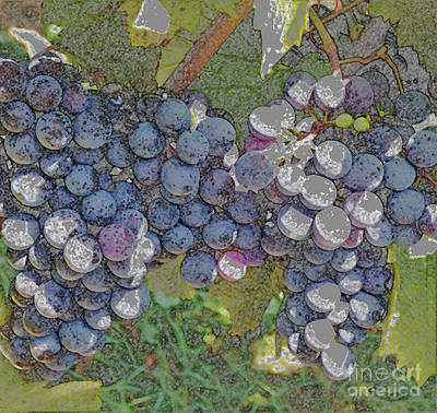 Decorating Mixed Media - Grapes On The Vine by Sharon Eng