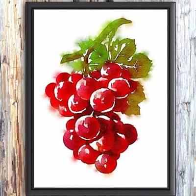 Grapes Photograph - Grapes. Red Grapes. Red Wine. Printable by Flash28photography