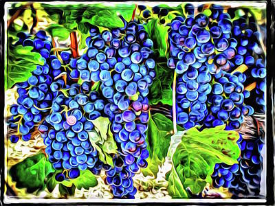 Photograph - Grapes by Roxy Hurtubise