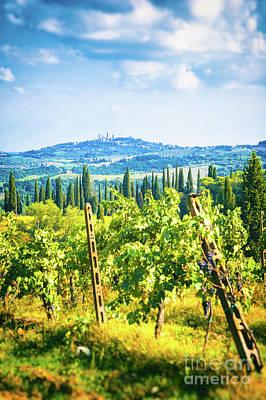 Photograph - Grapevine In San Gimignano Tuscany by Silvia Ganora