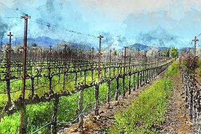 Grow Digital Art - Grapevines In A Row In Napa Valley California by Brandon Bourdages