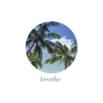 Breathe Photograph - Graphic Art Breathe - Palm Trees by Melanie Viola