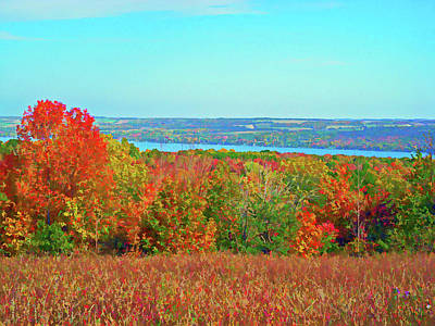 Photograph - Graphic Autumn Glory by Aimee L Maher Photography and Art Visit ALMGallerydotcom