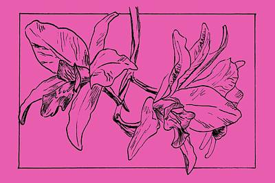 Single Object Drawing - Graphic Orchid On Transparent Background by Masha Batkova