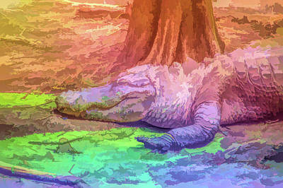 Photograph - Graphic Rainbow Alligator by Aimee L Maher Photography and Art Visit ALMGallerydotcom