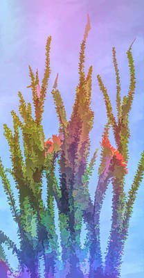 Photograph - Graphic Rainbow Ocotillo Plant by Aimee L Maher Photography and Art Visit ALMGallerydotcom
