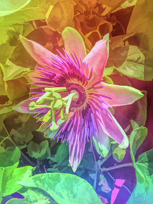 Photograph - Graphic Rainbow Passion Flower 5 by Aimee L Maher Photography and Art Visit ALMGallerydotcom