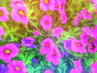 Photograph - Graphic Rainbow Pink And Purple Petunias by Aimee L Maher Photography and Art Visit ALMGallerydotcom