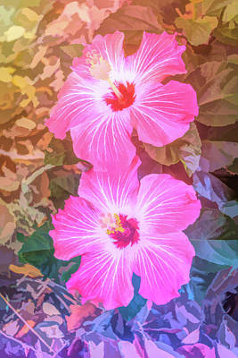 Photograph - Graphic Rainbow Pink Hibiscus Blooms Vertical by Aimee L Maher ALM GALLERY