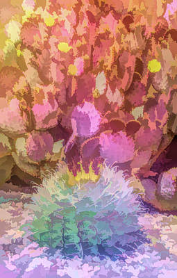 Photograph - Graphic Rainbow Prickly Pear Blooms by Aimee L Maher Photography and Art Visit ALMGallerydotcom
