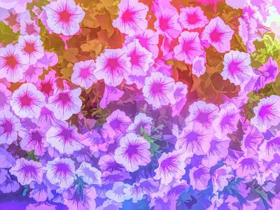 Photograph - Graphic Rainbow Purple Petunias by Aimee L Maher Photography and Art Visit ALMGallerydotcom