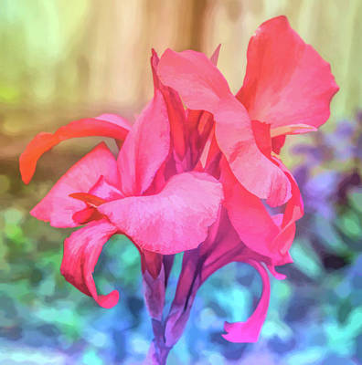 Photograph - Graphic Rainbow Red Canna Lily Floral by Aimee L Maher Photography and Art Visit ALMGallerydotcom