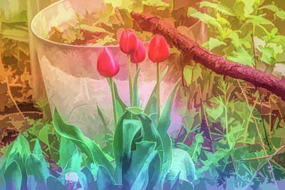Photograph - Graphic Rainbow Red Tulips by Aimee L Maher Photography and Art Visit ALMGallerydotcom