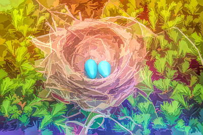 Photograph - Graphic Rainbow Robins Nest by Aimee L Maher Photography and Art Visit ALMGallerydotcom