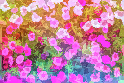 Photograph - Graphic Rainbow Shades Of Pink by Aimee L Maher Photography and Art Visit ALMGallerydotcom