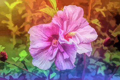 Photograph - Graphic Rainbow Summer Blossom by Aimee L Maher Photography and Art Visit ALMGallerydotcom