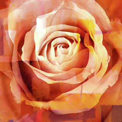Digital Art - Graphic Rose by Lutz Baar