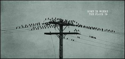 Photograph - Graphic - The Birds by Patricia Strand